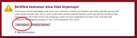 google chrome dukung sby-boediono